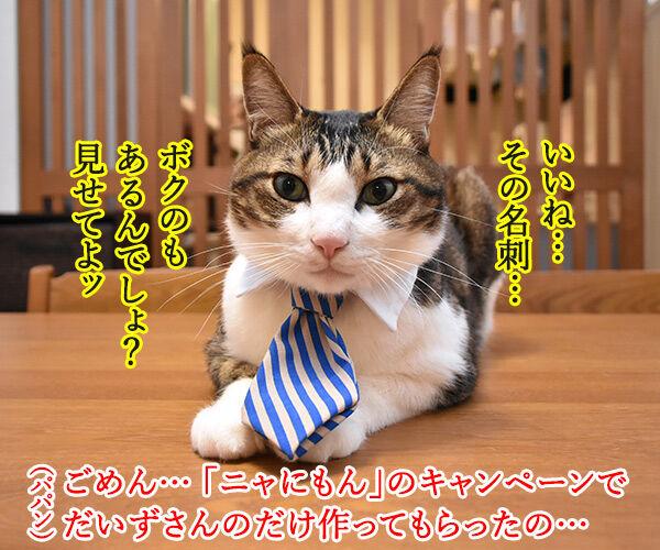「ニャにもん」で名刺をつくったのよッ 猫の写真で4コマ漫画 2コマ目ッ