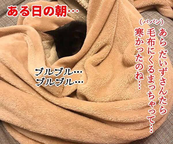 寒い夜はパパンのお布団で寝ませんこと? 猫の写真で4コマ漫画 1コマ目ッ