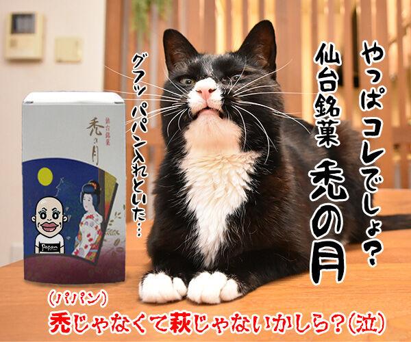 フルーツタルトにゃんことロールケーキにゃんこ 猫の写真で4コマ漫画 4コマ目ッ