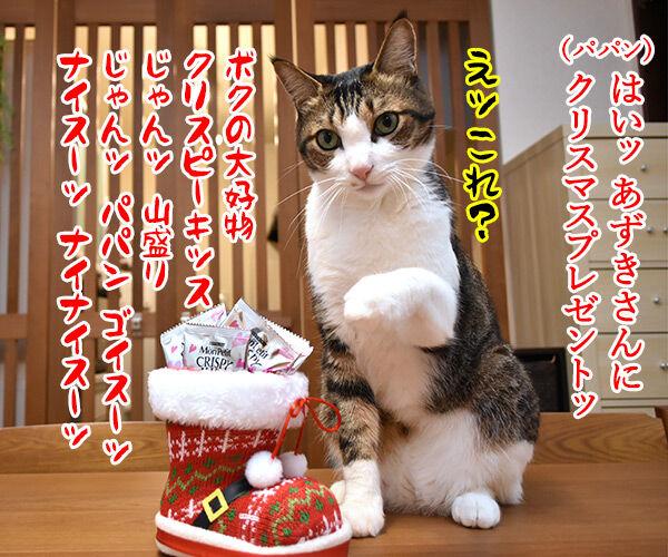 あずきさんとだいずさんにクリスマスプレゼントなのッ 猫の写真で4コマ漫画 1コマ目ッ