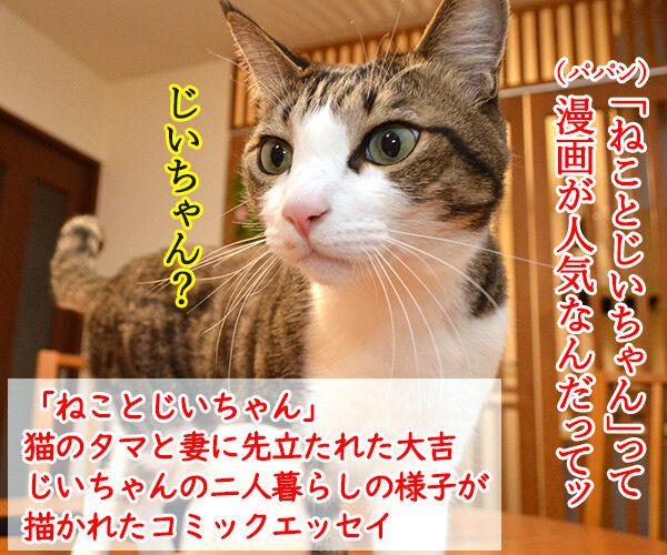 ねことじいちゃん 猫の写真で4コマ漫画 1コマ目ッ