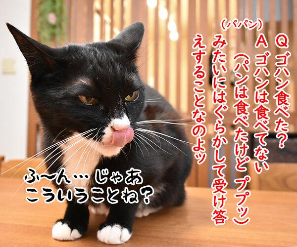 流行語大賞 ノミネート語 『ご飯論法』 猫の写真で4コマ漫画 2コマ目ッ