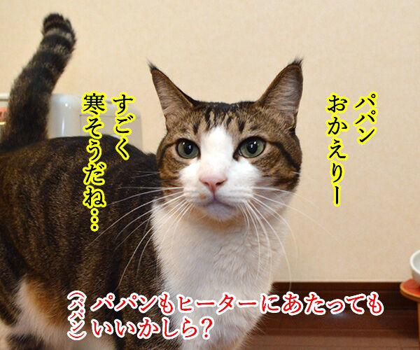 すぐあったかくなるヒーターのあたり方 猫の写真で4コマ漫画 2コマ目ッ