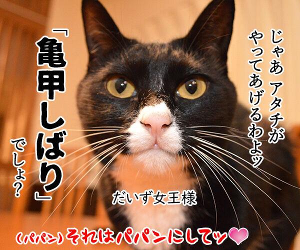 クサ汁 猫の写真で4コマ漫画 4コマ目ッ
