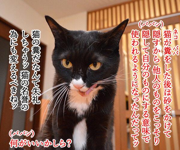小学校教諭がガソリンスタンドで5000円をネコババですってッ 猫の写真で4コマ漫画 3コマ目ッ