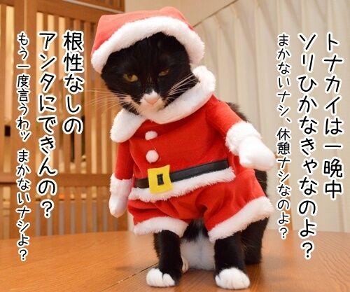 クリスマスにはサンタさんに会いたいの 猫の写真で4コマ漫画 3コマ目ッ