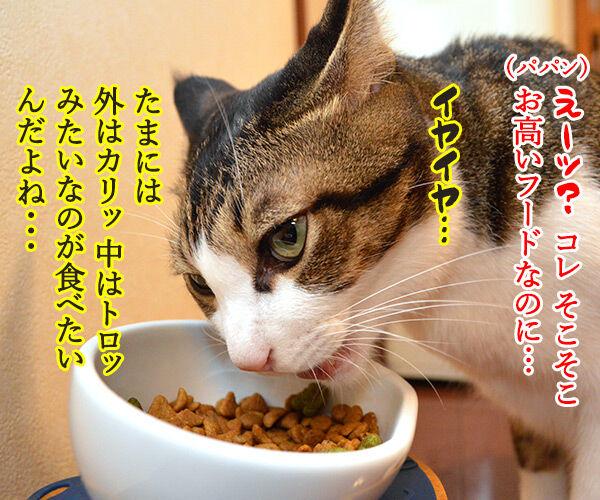 「ロイヤルカナンのカリカリ グリニーズ添え」でございます 猫の写真で4コマ漫画 2コマ目ッ