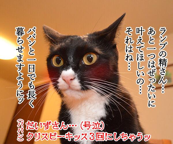 魔法のランプごっこがしたいのよッ 猫の写真で4コマ漫画 3コマ目ッ