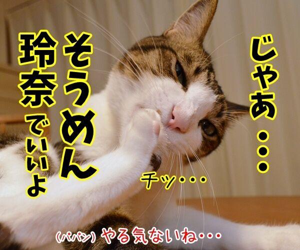 能年玲奈さんが「◯◯」に改名して再出発なんですってッ 猫の写真で4コマ漫画 3コマ目ッ