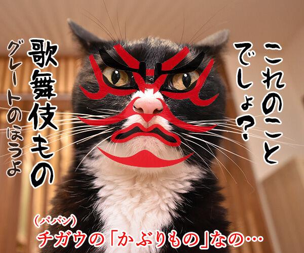 カプセルトイ『ねこのかぶりもの』の写真集が出たんですってッ 猫の写真で4コマ漫画 2コマ目ッ