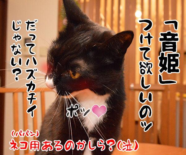 トイレのコトで話があるの 猫の写真で4コマ漫画 4コマ目ッ