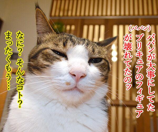 ケンカをやめて 猫の写真で4コマ漫画 3コマ目ッ