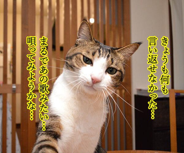 ポイズン 猫の写真で4コマ漫画 2コマ目ッ