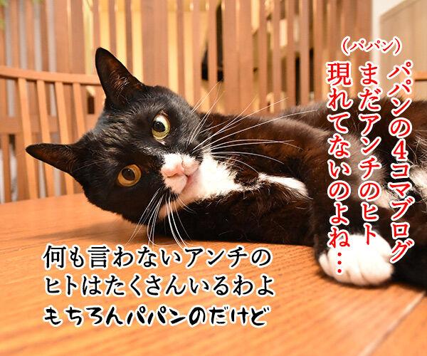 パパンのブログって… 猫の写真で4コマ漫画 1コマ目ッ
