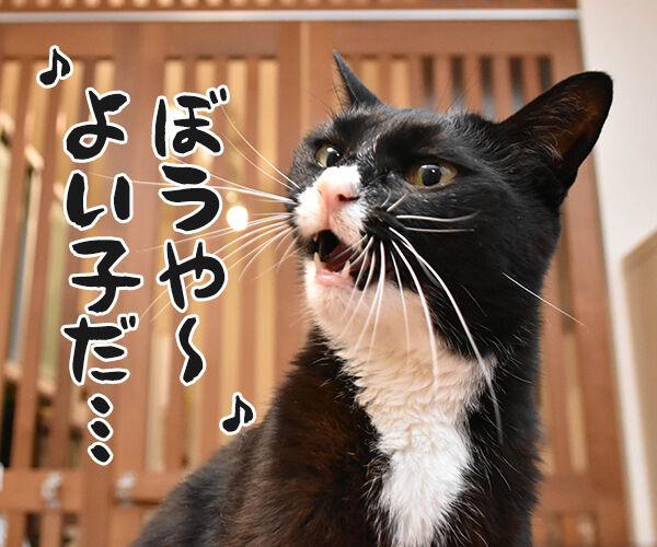 「まんが日本昔ばなし」常田富士男さんにつづき市原悦子さんも亡くなられました 猫の写真で4コマ漫画 3コマ目ッ