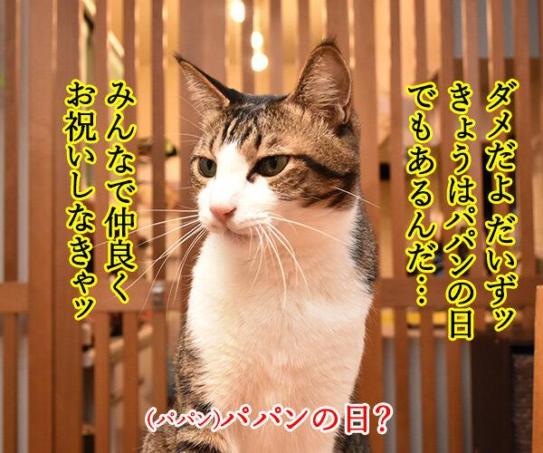 にゃんにゃんにゃんは猫の日なの 猫の写真で4コマ漫画 3コマ目ッ