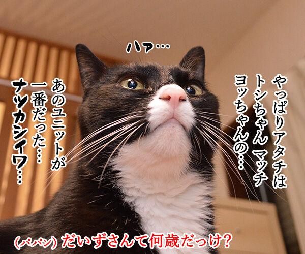 アタチがジャニーズで一番なのは…? 猫の写真で4コマ漫画 2コマ目ッ