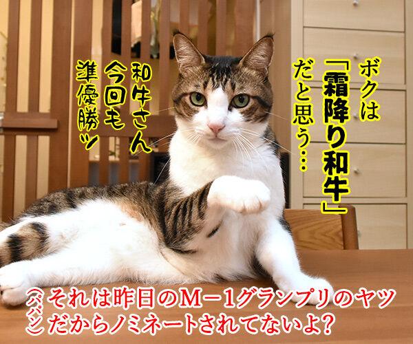 きょうは流行語大賞の発表日なのッ 猫の写真で4コマ漫画 3コマ目ッ