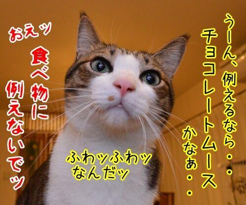 ウンチョス調査 猫の写真で4コマ漫画 4コマ目ッ
