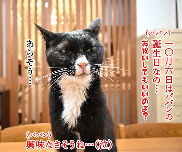 10月6日はパパンのお誕生日なのよッ 猫の写真で4コマ漫画 1コマ目ッ