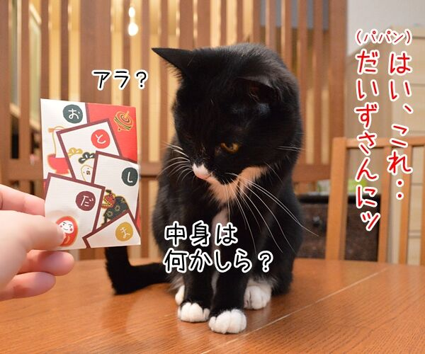 お正月だからあずだいにお年玉あげるわよッ 猫の写真で4コマ漫画 1コマ目ッ