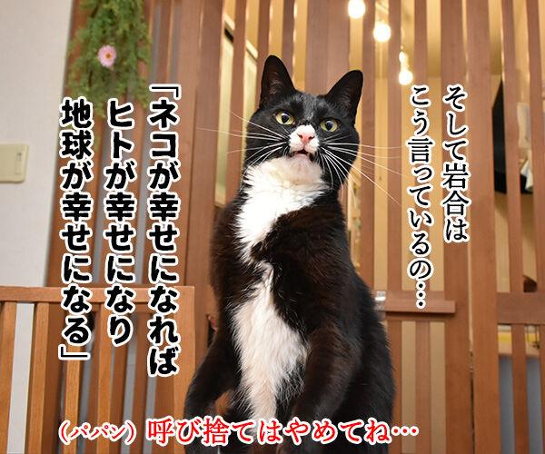 『劇場版 岩合光昭の世界ネコ歩き』は本日公開なのッ 猫の写真で4コマ漫画 3コマ目ッ
