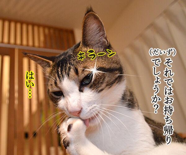 ハンバーガーショップ 猫の写真で4コマ漫画 2コマ目ッ