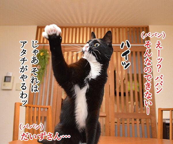 どうぞどうぞ 其の一 猫の写真で4コマ漫画 1コマ目ッ