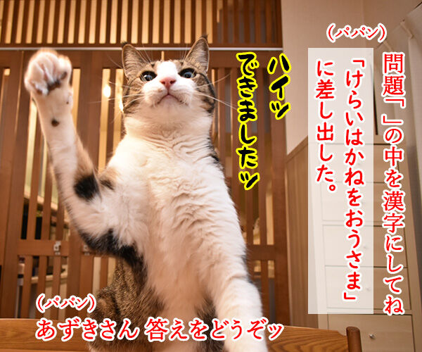 抜き打ちで漢字のテストをするのよッ 猫の写真で4コマ漫画 2コマ目ッ