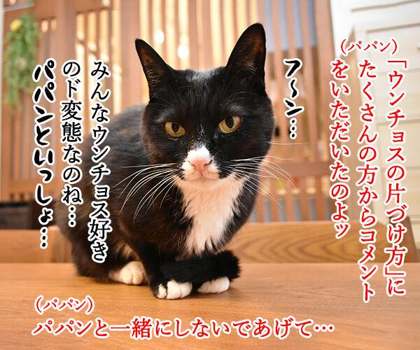 ウンチョスの片づけ方にたくさんコメントいただいたのッ 猫の写真で4コマ漫画 1コマ目ッ