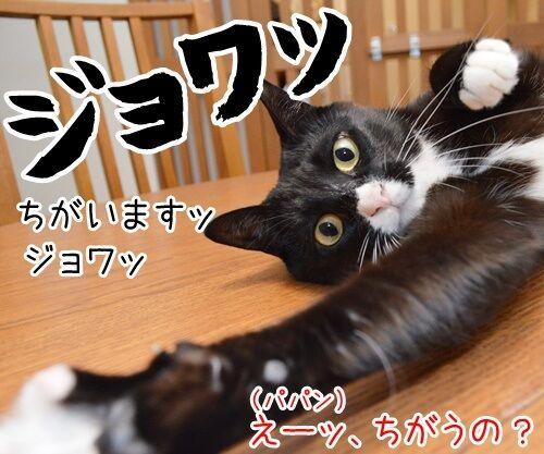 たいくつだからモノマネするわよッ 猫の写真で4コマ漫画 3コマ目ッ