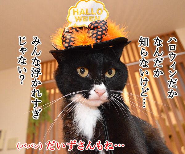 お菓子くれなきゃイタズラしちゃうぞ♥ 猫の写真で4コマ漫画 1コマ目ッ