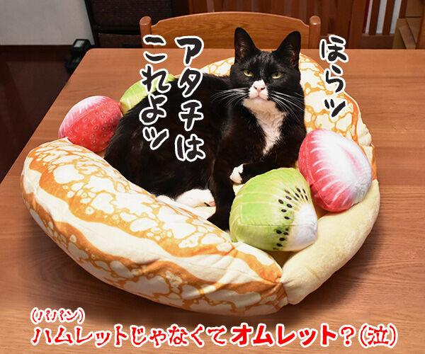 シェイクスピアの四大悲劇といえば? 猫の写真で4コマ漫画 4コマ目ッ