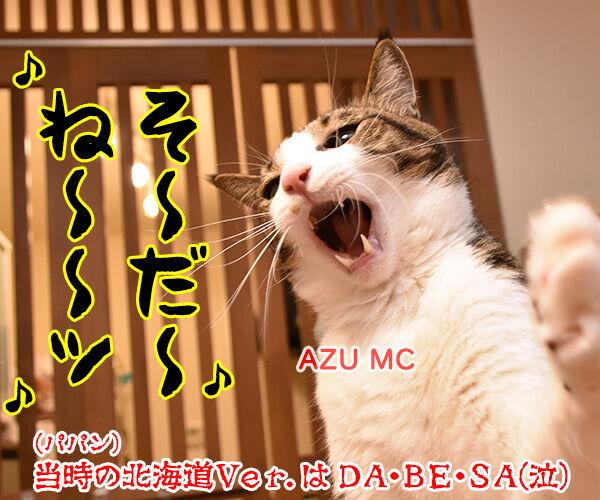 流行語大賞は「そだねー」に決まったのよッ 猫の写真で4コマ漫画 4コマ目ッ