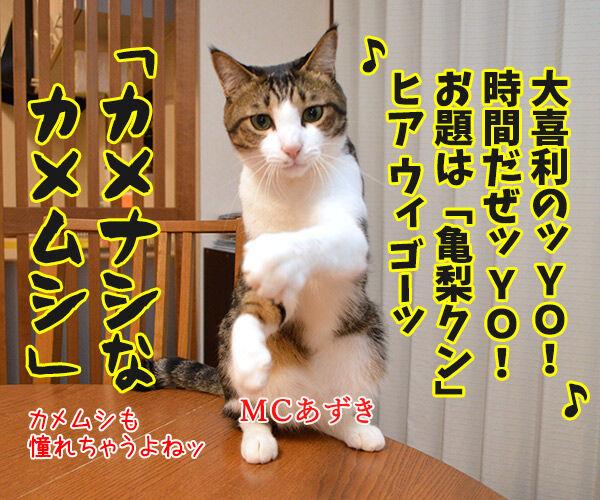 MCあずきのヒップホップ大喜利 猫の写真で4コマ漫画 1コマ目ッ