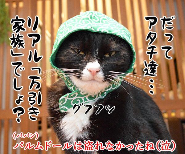 映画『万引き家族』はカンヌでパルムドールなのッ 猫の写真で4コマ漫画 4コマ目ッ