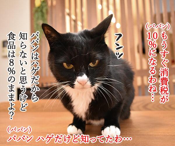 ペットフードの消費税は何%? 猫の写真で4コマ漫画 1コマ目ッ