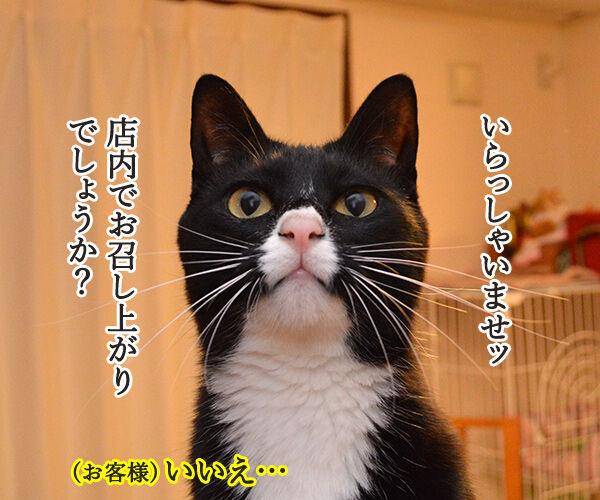 ハンバーガーショップ 猫の写真で4コマ漫画 1コマ目ッ