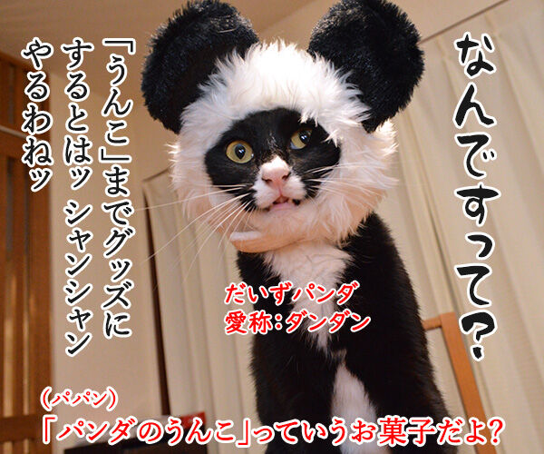 シャンシャンがうんこを販売したんですってッ 猫の写真で4コマ漫画 2コマ目ッ