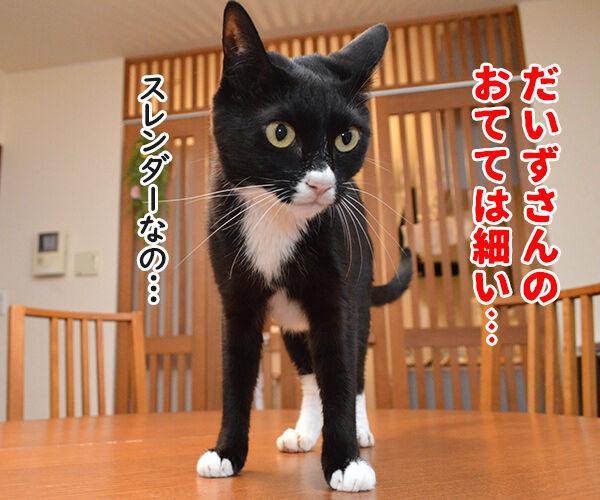 だいずさんは○○ 猫の写真で4コマ漫画 2コマ目ッ
