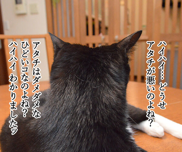変身 猫の写真で4コマ漫画 3コマ目ッ