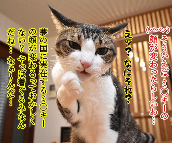 今日は東京ディ〇ニーランドが開園した日なんですってッ 猫の写真で4コマ漫画 2コマ目ッ