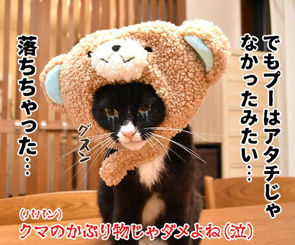 『プーと大人になった僕』を見ようと思うのッ 猫の写真で4コマ漫画 4コマ目ッ