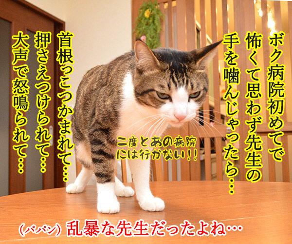 動物病院といえば想い出す 猫の写真で4コマ漫画 2コマ目ッ
