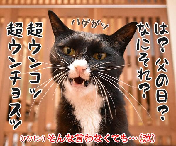 父の日なんて超ウンチョス 猫の写真で4コマ漫画 1コマ目ッ
