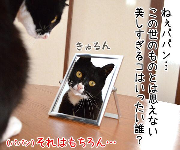 鏡の中の 猫の写真で4コマ漫画 3コマ目ッ