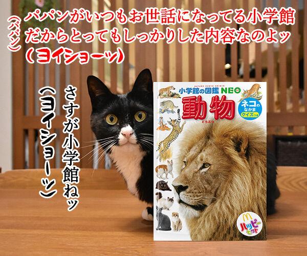 ハッピーセットのおまけでネコのなかまの図鑑がもらえるのッ 猫の写真で4コマ漫画 2コマ目ッ