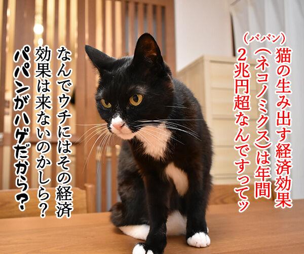 ネコノミクスの経済効果は2兆円超 猫の写真で4コマ漫画 1コマ目ッ