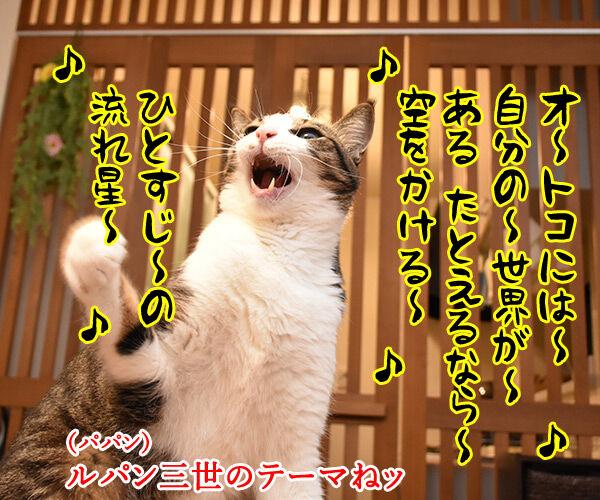 ルパンの曲といえばやっぱりこの曲よねッ 猫の写真で4コマ漫画 3コマ目ッ