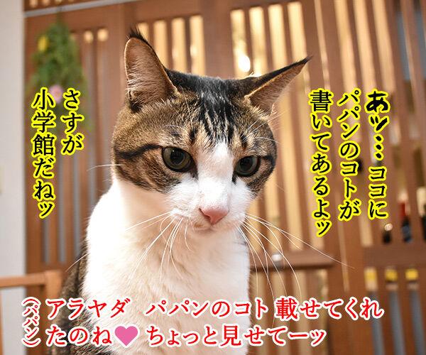ハッピーセットのおまけでネコのなかまの図鑑がもらえるのッ 猫の写真で4コマ漫画 3コマ目ッ